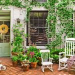 A Home Gardening Idea For Those Who Don't Have Time to Grow Your Own Plants