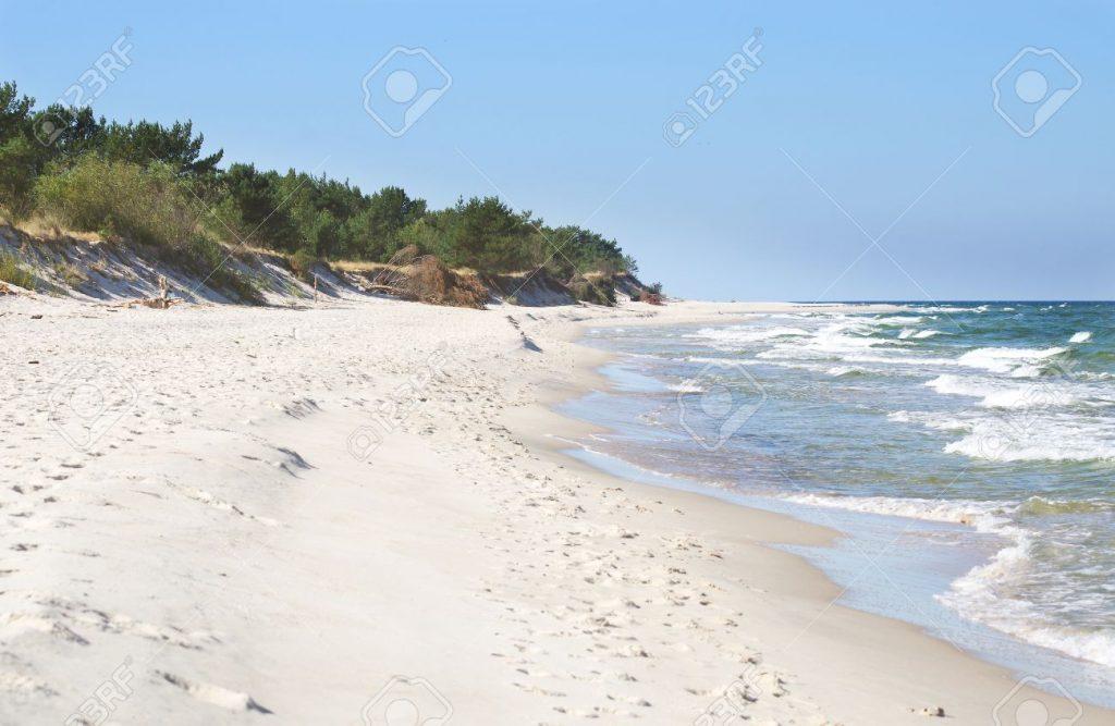 white sand beach with wild dunes, Hel, Poland